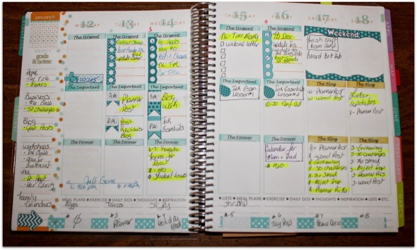 Everyday Moodlings, Erin Condren Planner.JPG